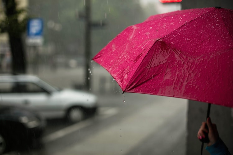 Ilustrasi tips berwisata saat hujan, sumber unsplash @ewitsoe